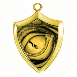 Gold shield pendant